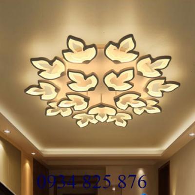 Đèn Ốp Trần Hiện Đại-OT054-15