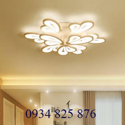 Đèn Ốp Trần Hiện Đại-OT8063-9