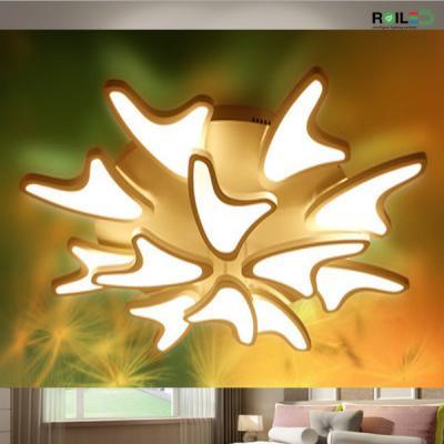 Đèn trần trang trí Acrylic RMT1633-12