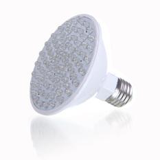 Red Blue 80 LED Bulb Plant Grow Light Lamp (Intl)